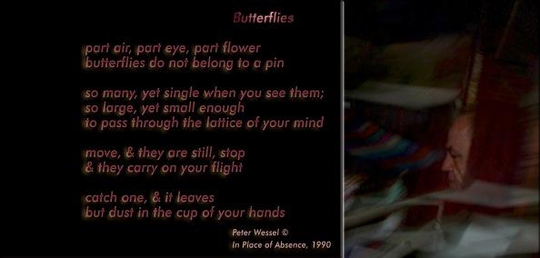 butterflies-wide-version